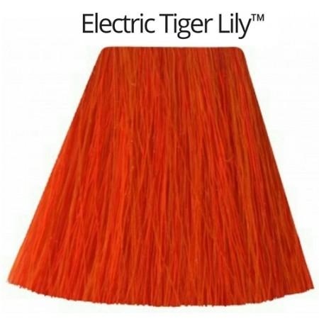 Electric Tiger Lily- גווני כתום -0