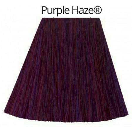 Purple Haze- גווני סגול-0