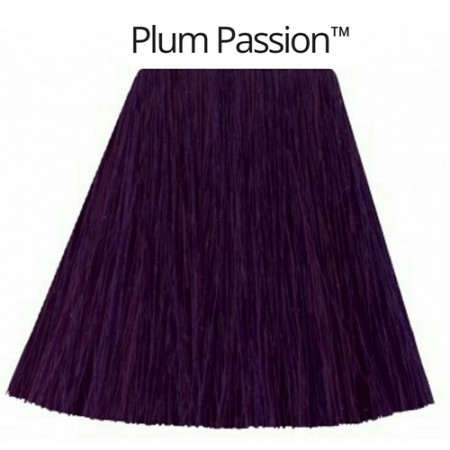 Plum Passion- גווני סגול-0